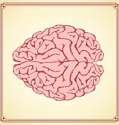 Sketch human brain in vintage style vector