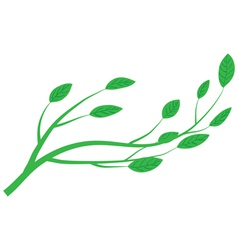 Branch of tree vector