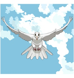 Bird white dove on a background of sky vector