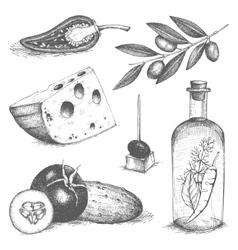 Vintage healthy food vector