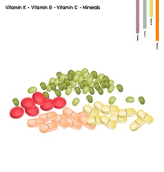 Mung bean with vitamin k vitamin b vitamin c vector