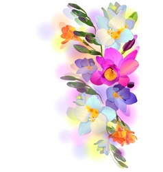 Background with gentle freesia flowers and vector