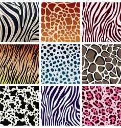 Animal skin textures vector