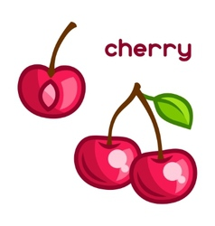 Stylized of fresh cherry on white vector