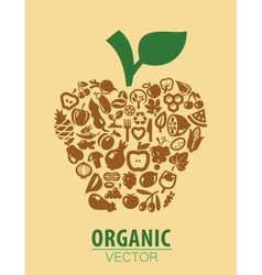 Organic vegetables and fruits vector