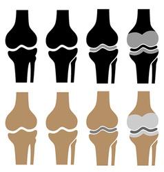 Human knee joint symbols vector