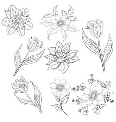 Flowers set outline vector