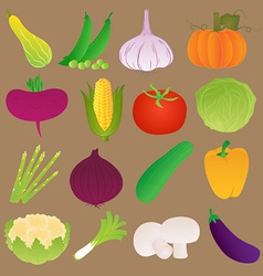 Set of fresh vegetables vector