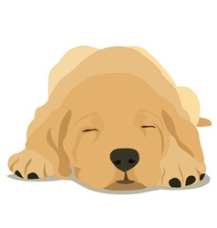 Sleepy labrador puppy vector