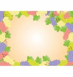 Grape frame vector
