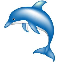 Dolphin vector