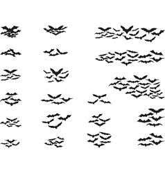 Bats flying vector