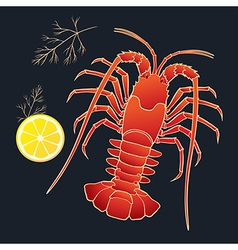 Crayfish with lemon and dill vector