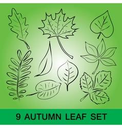 Simple leaf set eps10 vector