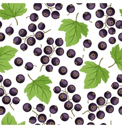 Seamless nature pattern with black currants vector