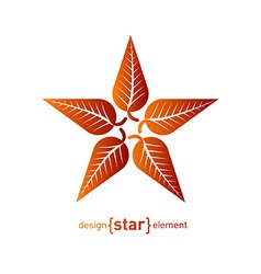 Abstract design element star with red autumn leafs vector