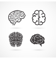 Brain - set of and icons vector
