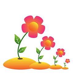 Grow flower vector