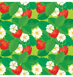 Strawberry seamless 2 380 vector