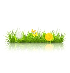 Dandelions and grass vector