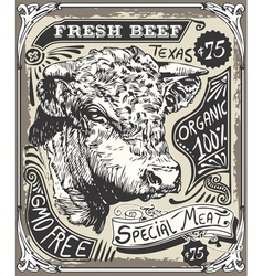 Vintage beef advertising page vector