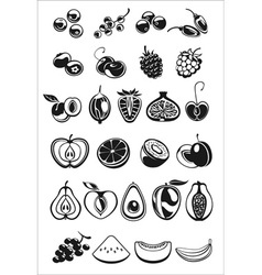 Fruits and berry icons vector