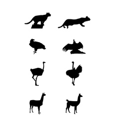 Silhouettes of a south america vector