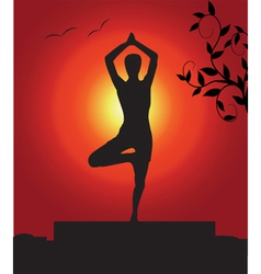 Outdoor yoga vector