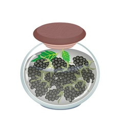 Jar of preserved blackberries or blackberry jam vector