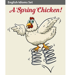 English idiom showing a spring chicken vector