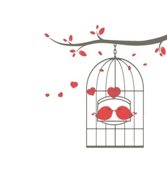 Love birds on the cage vector