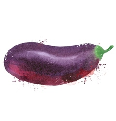 Eggplant logo design template vegetables vector