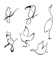 Bird design set vector
