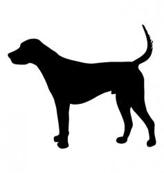 English foxhound vector