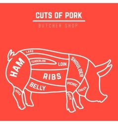 Cuts of pork vector