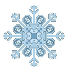 Single snowflake vector
