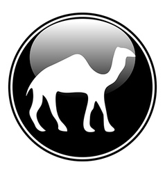 Camel button vector