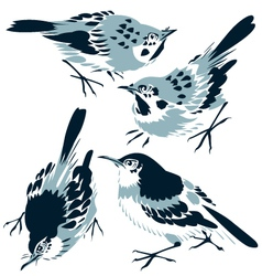 Bird illustration vector