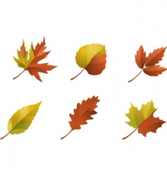 Nature logos 09 autumn leaves vector