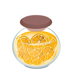 A jar of delicious preserved fresh orange vector