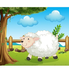 A sheep inside the fence vector