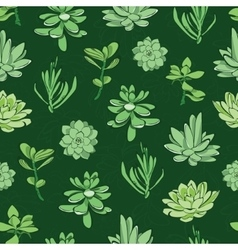 Fresh green succulents seamless pattern vector