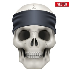 Human skull with gangster bandana on head vector