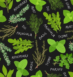 Herbs pattern vector