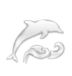 Dolphin silhouette of water drops vector