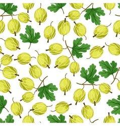 Seamless nature pattern with gooseberries vector