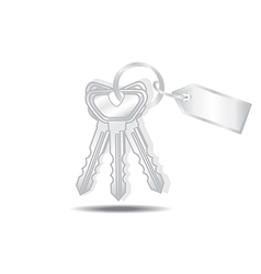 Keys and tags isolated vector