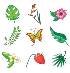 Tropical plants and animals icon vector