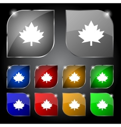 Maple leaf icon set colourful buttons vector