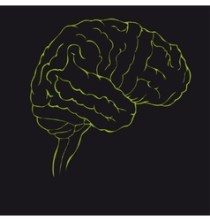 Brain in green side view vector